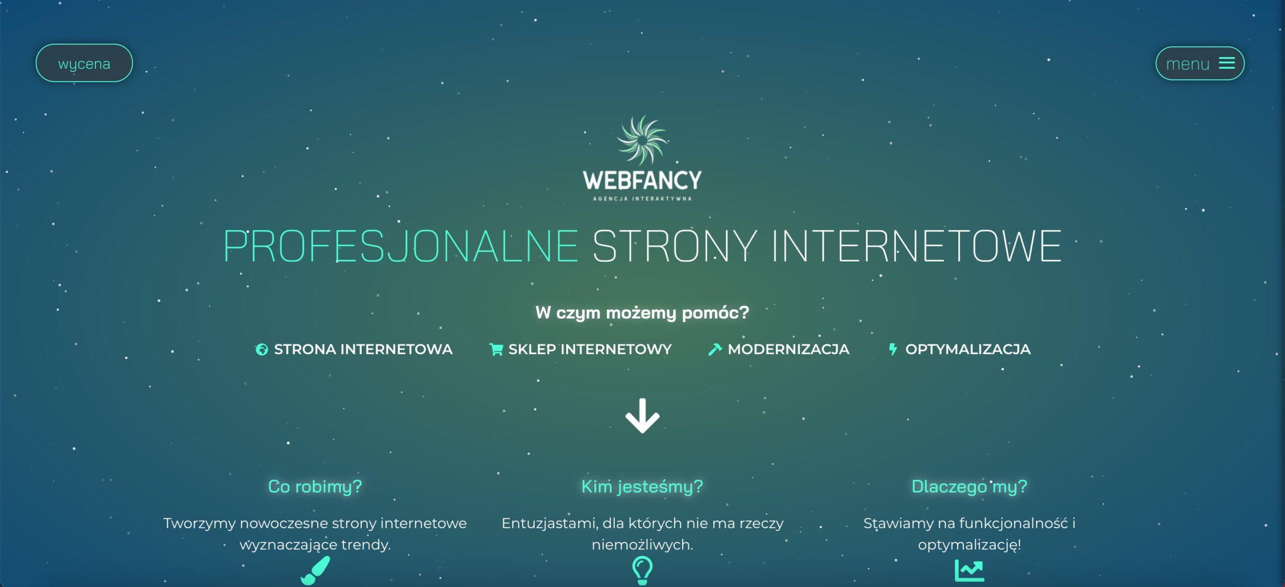 strony internetowe krakow